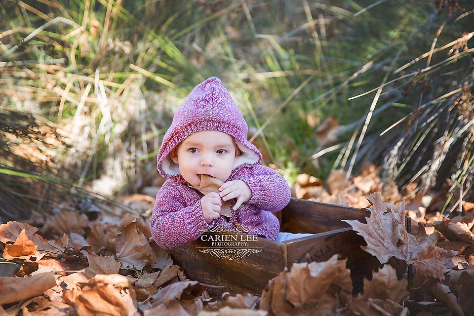 Bunbury-family-photography-wilson-family (12)